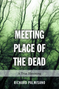 Meeting Place of The Dead : A True Haunting book cover